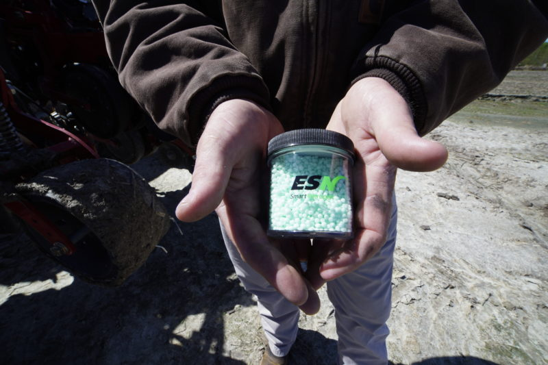 Man holding jar of green nitrogen fertilizer granules