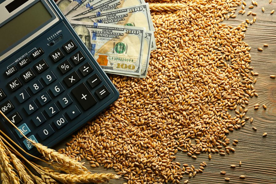 calculator and bank notes sitting on grain kernels demonstrating ROI with ESN