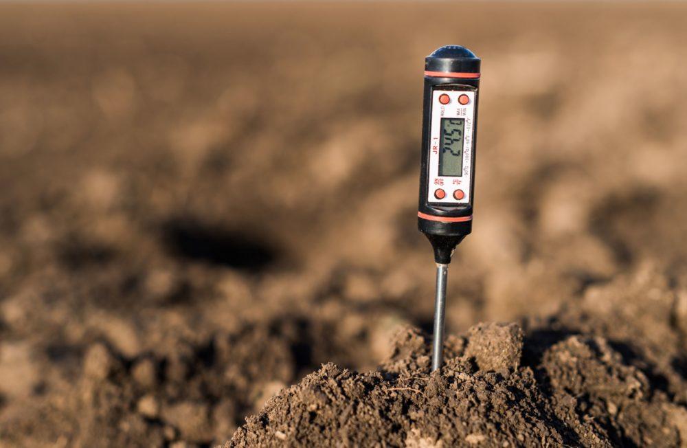 soil testing probe in soil