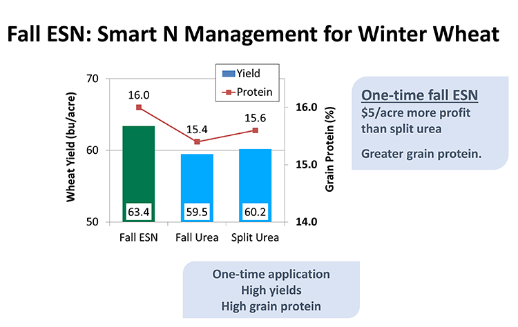 Yield of Winter Wheat Grown Under Varying Nitrogen Management Strategies in Northern Ontario
