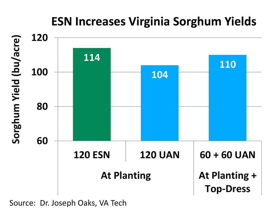 Benefits of Using ESN Technology on Grain Sorghum